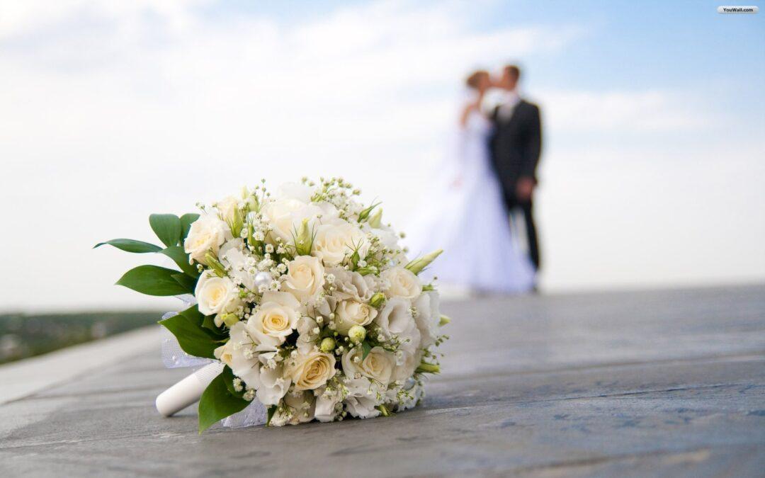 Fotógrafos profesionales de bodas